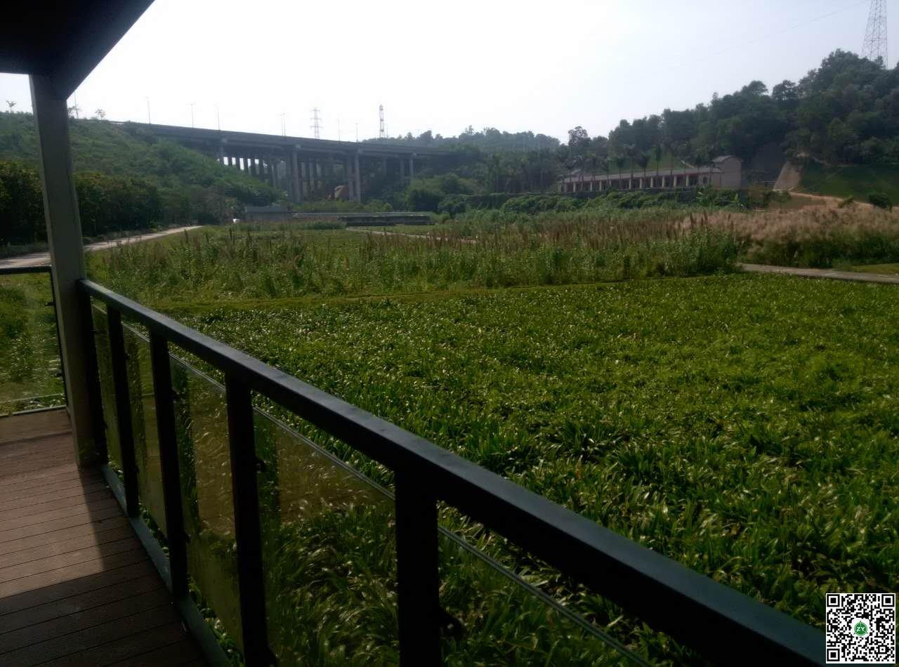 深圳环境科学研究院甘坑人工湿地沼气工程