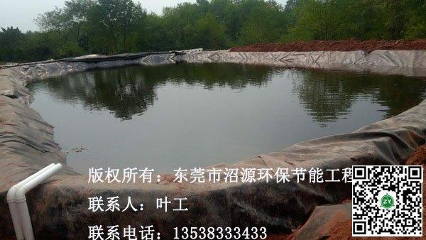 常德桃源某养殖场黑膜沼气池8000立方