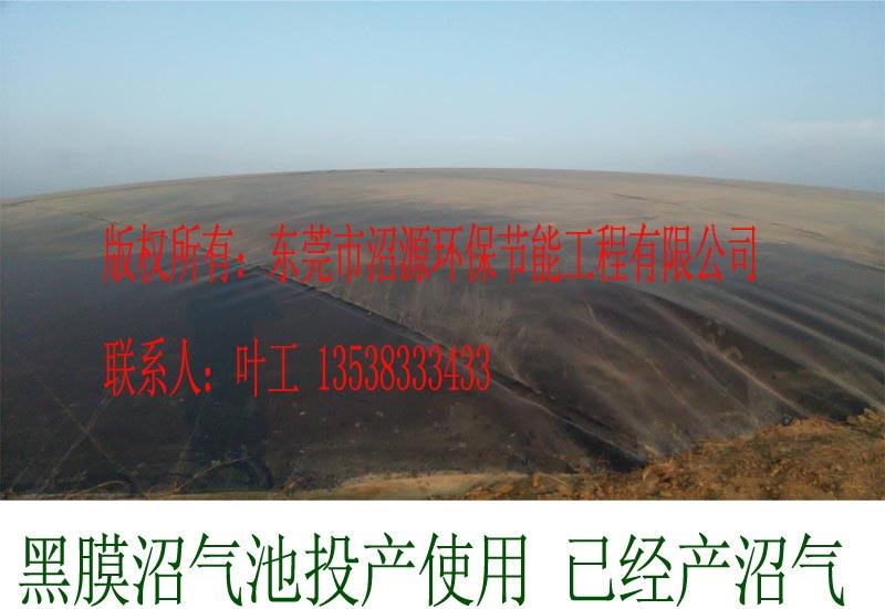 桃源县枫树某养殖场黑膜沼气池8000立方投入使用