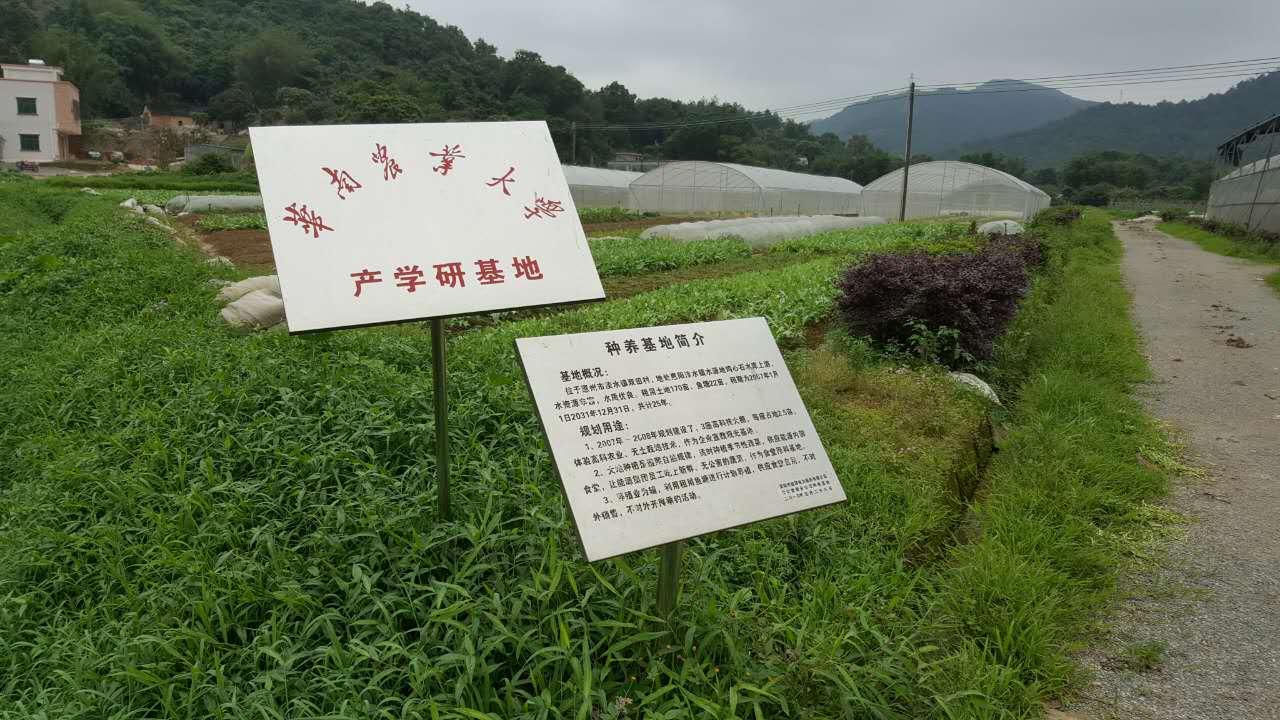沼液沼渣用来种植有机蔬菜经典案例