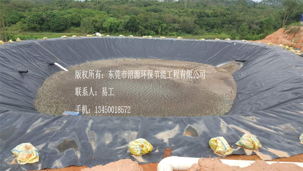 广东惠州惠东梁化3000立方黑膜沼气工程 沼气池
