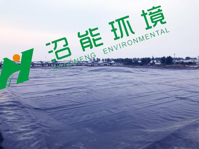 牧原股份卧龙第三分场20000立方bobAPP安卓沼气工程bobAPP安卓沼气池成功封顶