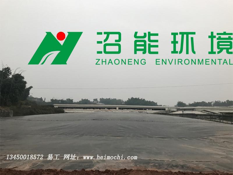 重庆荣昌某猪场10000立方bobAPP安卓沼气工程 bobAPP安卓沼气池